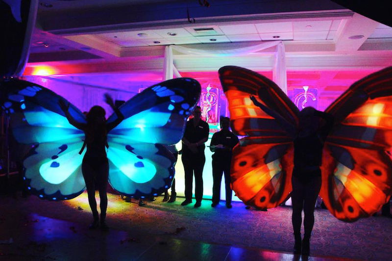 Butterfly Fairies LED