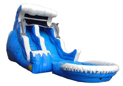 Dolphin Wave Slide With Pool