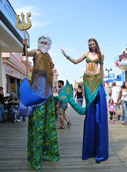 Mermaid Performers